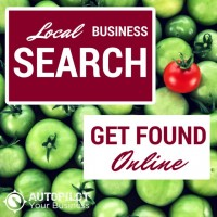 Local Business Search
