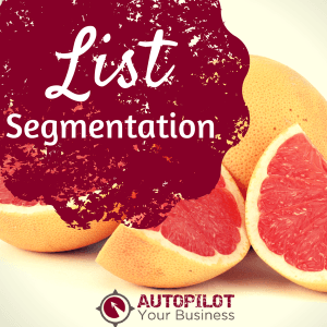 #72 – List Segmentation: Why is it Important for Your Business?